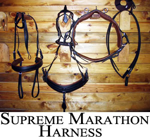 Supreme marathon harness